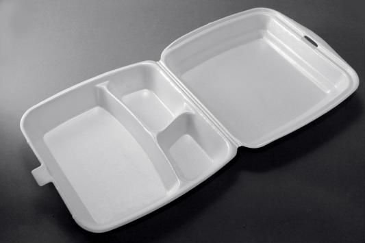 LB 3 Division Foam Food Container